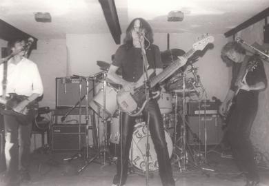 Firebird 1980