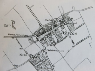 Map of Westoe 1856